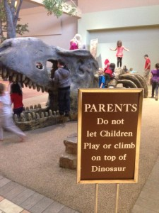 Do not play on the dinosaur.