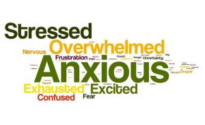 A Word Cloud reveals the stress and anxiety of 1Ls.
