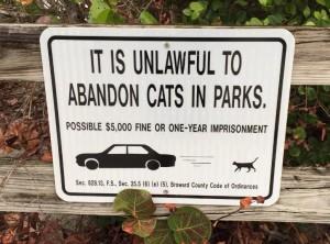 Cat sign 1